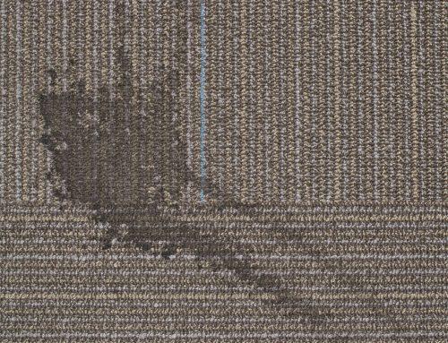 7 trucos caseros para quitar manchas de la alfombra