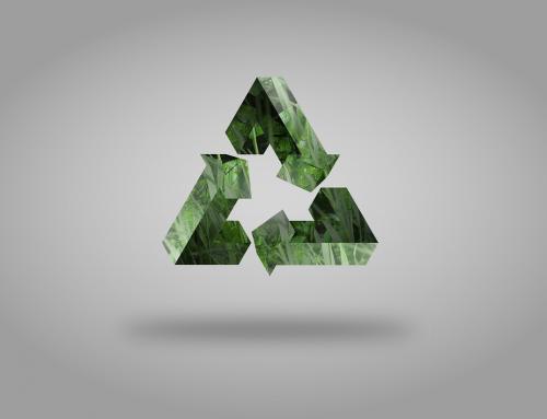 10 razones de peso para comenzar a reciclar