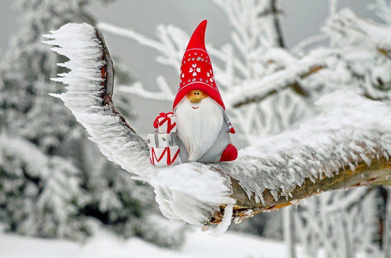 5 recomendaciones para tener una Navidad ecológica