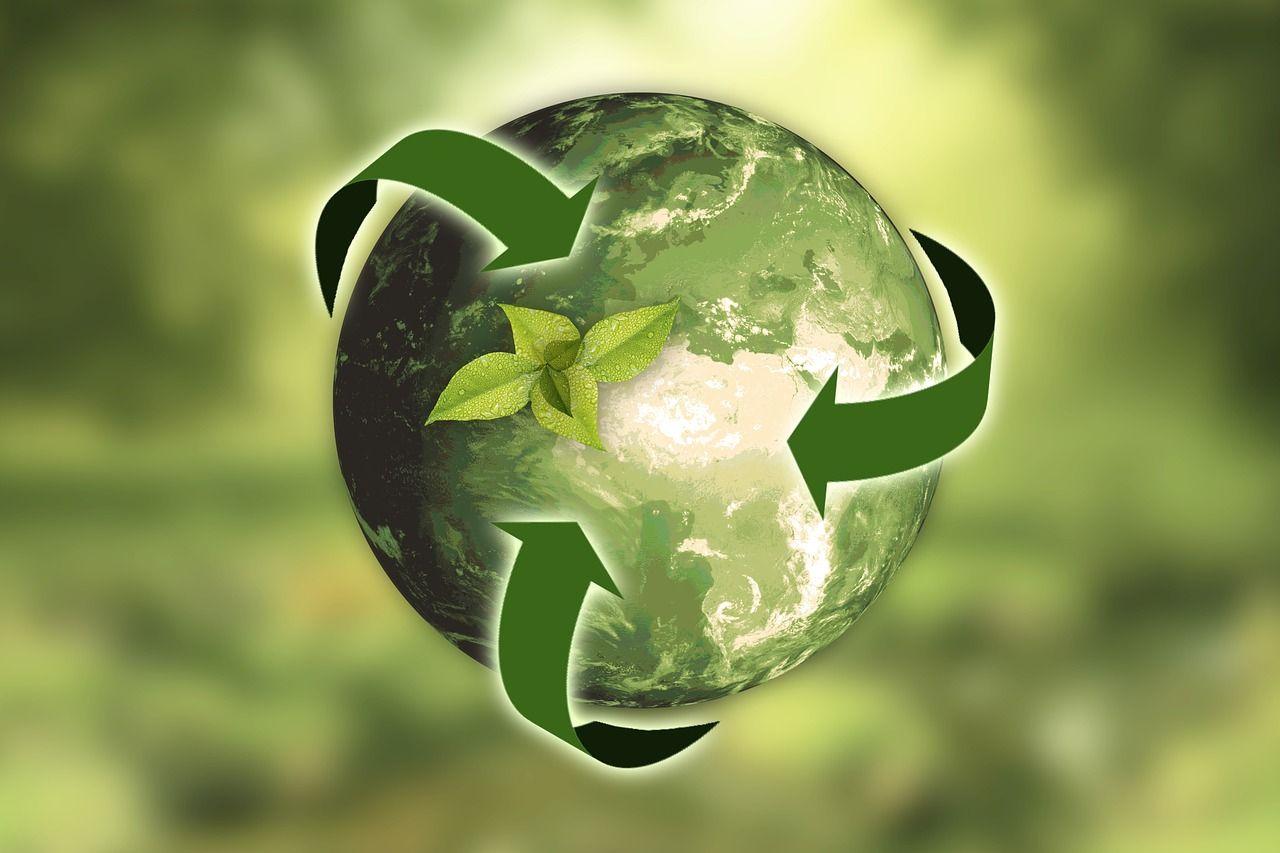 5 consejos sencillos para ahorrar y cuidar el medio ambiente